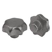 Kipp 32 mm Diameter, Star Grip Knob, Gray Cast Iron, DIN 6336, Style A (1/Pkg.), K0151.106