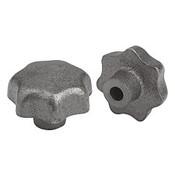 "Kipp .500"" mm Inside Diameter 63 mm Diameter, Star Grip Knob, Gray Cast Iron, DIN 6336, Style C (1/Pkg.), K0151.3CP"