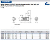 Kipp M5 Spring Plungers, LONG-LOK, Pin Style, Hexagon Socket, Steel Body/POM Pin, Standard End Pressure (10/Pkg.), K0328.05
