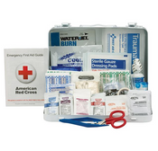 25-Person, 141-Pc ANSI A+ First Aid Kit, Plastic