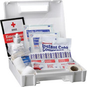 25-Person, 110-Piece Bulk First Aid Kit, Plastic