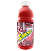 Sqwincher Ready-To-Drink Bottles, Fruit Punch (24/Case)