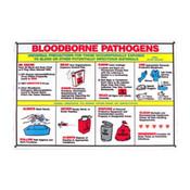 Brady® Biohazard Safety Poster