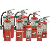 """Buckeye 5.5 lb Halotron I® Extinguisher w/ Aluminum Valve, Hose & Vehicle Bracket, 16 3/8""""H x 7 1/4""""W x 4 1/4""""D, 5B:C"""