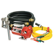 Fill-Rite RD Series Portable Fuel Transfer Pump, 12 V, 3/4 in (NPT), 8 ft Discharge Hose, 1 EA