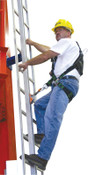 Honeywell Complete with Rail, Gated Top and Bottom End-Stops; 9 Ladder Attachment Brackets, 1/EA, #GG0050