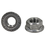 M6-1.00 Hex Flange Nuts Serrated A2 (18-8) Stainless Steel (100/Pkg.)