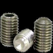 "1/4""-20x3/4"" Socket Set Screws Cup Point Coarse Ni-Cu Alloy (100/Pkg.)"