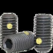 """1/4""""-20x3/4"""" Socket Set Screws Cup Point Coarse Alloy w/ Nylon-Pellet Thermal Black Ox (100/Pkg.)"""