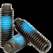 "#10-24x1/4"" Socket Set Screws 1/2 Dog Point Coarse Alloy w/ Nylon-Patch Thermal Black (100/Pkg.)"