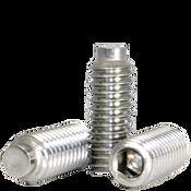 "#8-32x1/4"" Socket Set Screws 1/2 Dog Point Coarse 18-8 Stainless (100/Pkg.)"