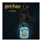 Harry Potter - Themed Light Up Key Ring Paladone 705916