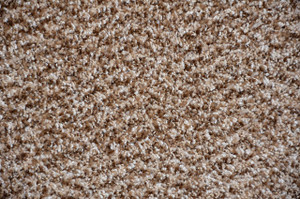 Cache Beige Plush 5' x 7' Serged Carpet Area Rug