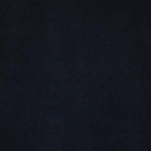 Dean Panther Black Carpet Runner - Indoor/Outdoor Patio Deck Boat RV Grill Entrance Carpet/Runner Rug Mat - Size: 4' x 6'