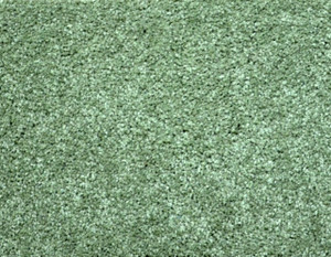 Citrus Green Plush 8' x 10' Bound Carpet Area Rug