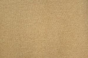 Dean Gold 5' x 7' Serged Carpet Area Accent Dorm Rug