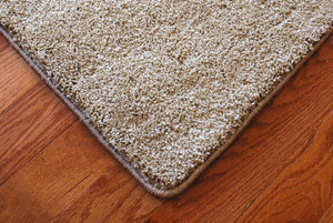 Barley 70 oz. PLUSH 6' x 9' Area Rug