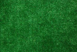 Dean Indoor/Outdoor Green Artificial Grass Turf Area Rug 6' x 8'
