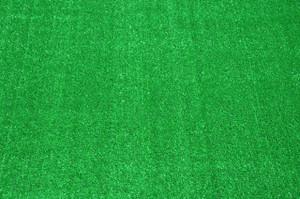 Dean Indoor/Outdoor Green Artificial Grass Turf Area Rug 6' x 9'