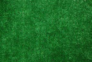 Dean Indoor/Outdoor Green Artificial Grass Turf Area Rug 9'x12'