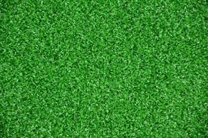 Dean Premium Heavy Duty Indoor/Outdoor Green Artificial Grass Turf Carpet Rug/Putting Green/Dog Mat, Size: 6' x 8'