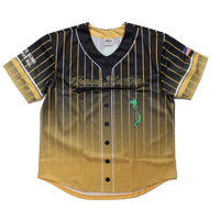 Sublimated Baseball Jersey - Vietnam Veteran Era