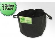 2 Gallon Fabric Prune Pot (3 Bag Bundle)