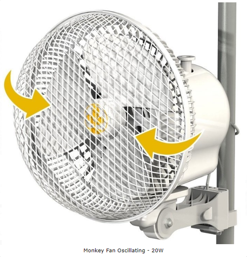Monkey Fan - Oscillating - 20W