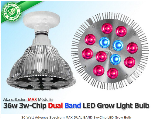 36 Watt Advance Spectrum MAX DUAL BAND 3w-Chip LED Grow Bulb