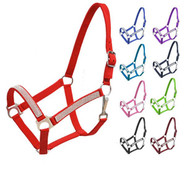 2Ply horse size nylon halter with crystal noseband and cheeks.