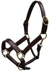 Yearling size leather halter with brass hardware.  Comes with double buckles on crown, adjustable nose and throat latch.