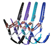 Showman ® Nylon halter with leather accents and rope nose with removeable lead.