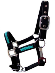Showman ® PONY SIZE nylon halter with turquoise braded synthetic inlay.