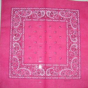 Hot Pink Paisley Bandana Pack of 6 - FREE Shipping!