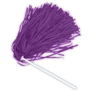 Purple Awareness Pom Poms