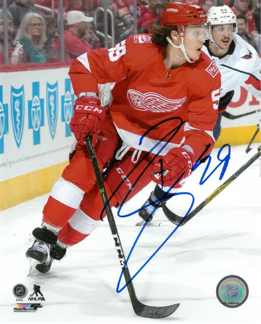 TYLER BERTUZZI AUTOGRAPHED DETROIT RED WINGS HOME JERSEY