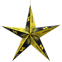 "University of Michigan Little Earth 24"" Team Star Paper Lantern"