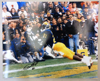 Desmond Howard Autographed Michigan Wolverines 16x20 Photo #3