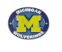 University of Michigan Aminco Oval Pin
