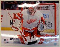 Jared Coreau Autographed Detroit Red Wings 16x20 Photo #2