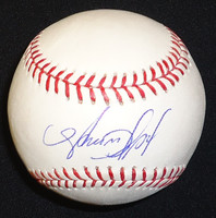 Avisail Garcia Autographed Baseball - Official Major League Ball