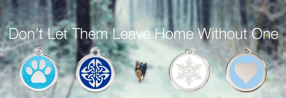dog id tags for safety