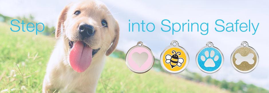 dog ID tags, cute dog tags