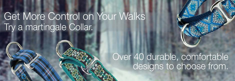 dog collars for control on walks