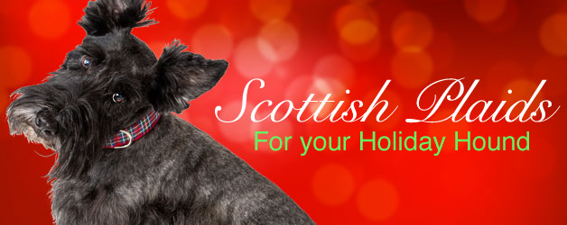 Scottish Plaid Dog Collars