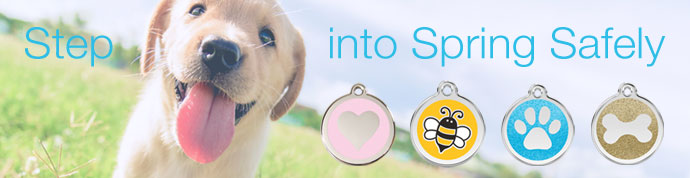 spring dog id tags