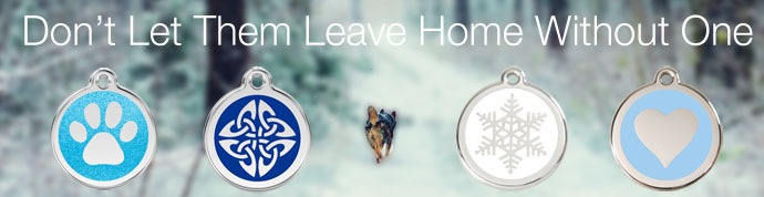 dog id tags for winter safety