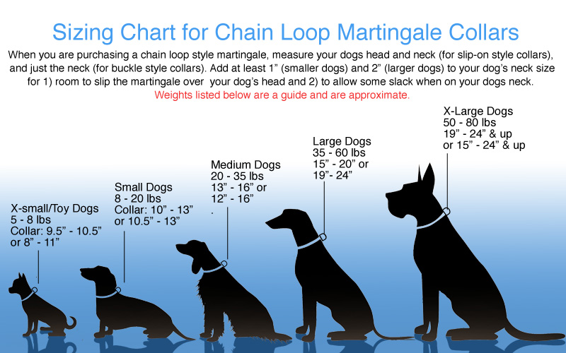 size-chart-chain-loop-martingale-dog-collars-ver2.jpg