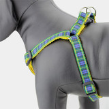 Plaid Dog Harness, Gordon Tartan, Step in style, Choke Free