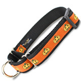 Halloween Martingale Collar with Jack o Lanterns